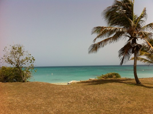 Playa Pelícano Reserva Natural Caja de Muerto (José Coss Charriez)