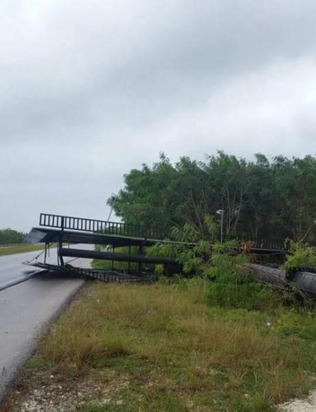 En las carreteras ya has escombros como consecuencia de la tormenta tropical Erika. (Victor de la Cruz)