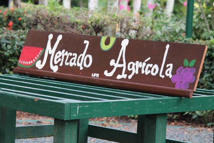 El domingo se celebró la primera edición del Mercado Agrícola del Jardín Botánico de la UPR. (Michelle Estades)