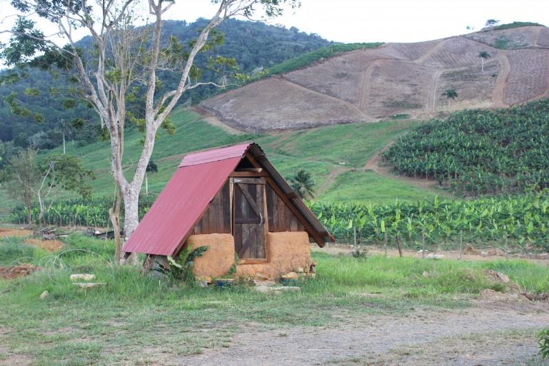 """En la propiedad hay varias estructuras, como este gallinero, construidas con la técnica """"cob"""", utilizando barro, arena y paja."""