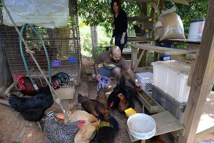 Kevin García y Giomara La-Quay dándole comida a las gallinas. (Ricardo Alcaraz/ Diálogo)
