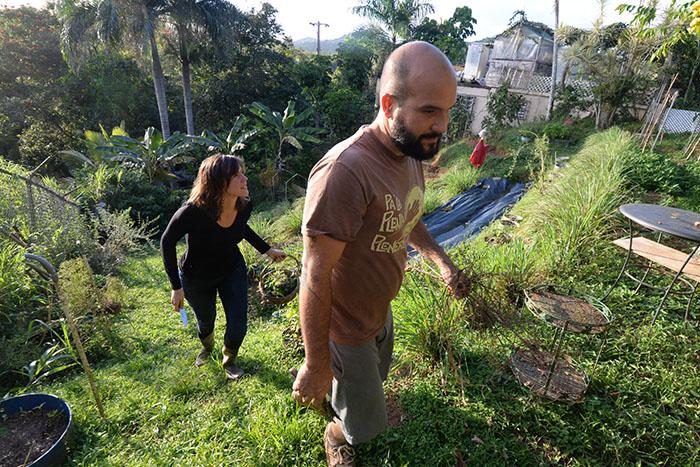 El huerto de AgroCocina es estilo terraza. (Ricardo Alcaraz/ Diálogo)