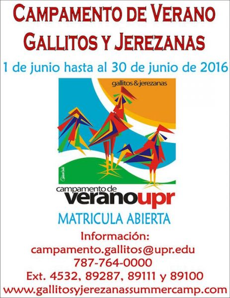 Gallitos Summer Camp