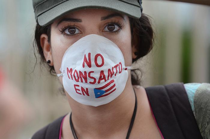 Marcha contra Monsanto/25 de mayo 2013
