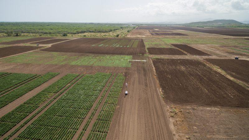 Foto aérea de la Hacienda Potala, en Juana Díaz, alquilada por Monsanto. (Suministrada)