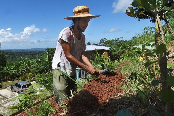 Omar Iloy Colón viaja desde Mayagüez a Lares para ofrecer trabajo voluntario en el Proyecto Guayabacherry.