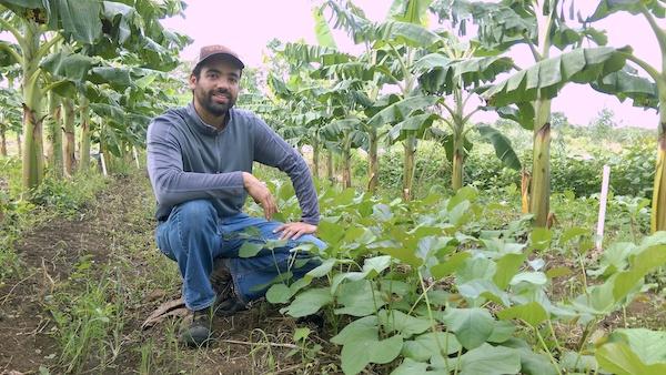 Duamed Colón, biólogo y empresario, junto a su siembra. (CPI)