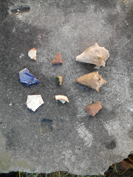 Artículos arqueológicos encontrados en el área. (suministrada)